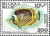 [Fish - The 125th Anniversary of Antwerp Zoo, Typ AJS]