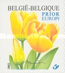 [Darwin Tulip - Self-Adhesive Stamp - Imperforated on 1 or 2 Sides, Typ CSW]