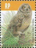 [Birds - Short Eared Owl, type ECN]