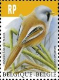 [Birds - Bearded Reedling, Typ FAY]