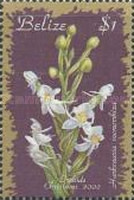 [Christmas - Orchids, type ACR]