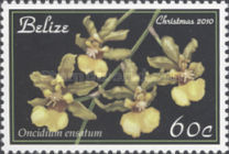 [Christmas - Orchids, type AEX]