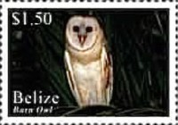 [Birds of Belize, type AGI]