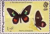 [Butterflies of Belize, Typ I]