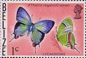 [Butterflies of Belize, Typ J]