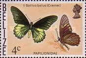 [Butterflies of Belize, Typ M]
