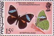 [Butterflies of Belize, Typ P]