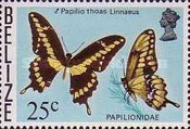 [Butterflies of Belize, Typ R]