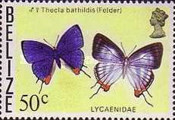 [Butterflies of Belize, Typ T]