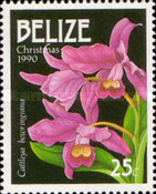 [Christmas - Orchids, type VD]