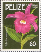 [Christmas - Orchids, type VF]