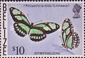 [Butterflies of Belize, Typ X]