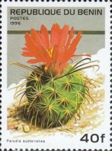 [Flowering Cacti, Typ TV]