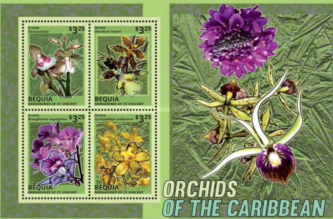 [Flowers - Orchids of the Caribbean, Typ ]