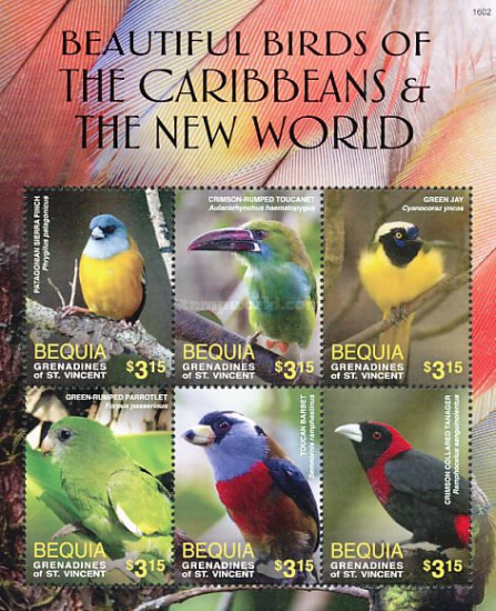 [Beautiful Birdsof the Caribbean and the New World, Typ ]