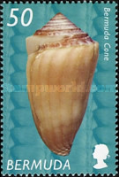 [Shells, Typ AAJ]