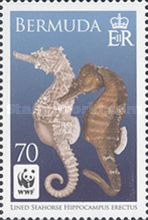 [WWF Issue - Lined Seahorse, Typ AGO]