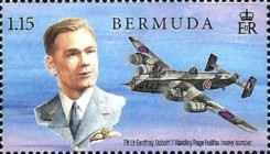 [The 100th Anniversary of the RAF - Royal Air Force, Typ AMQ]