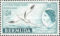 [Royal Visit - As White-tailed Tropicbird but Inscribed