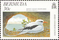 [Bird Conservation, Typ WF]