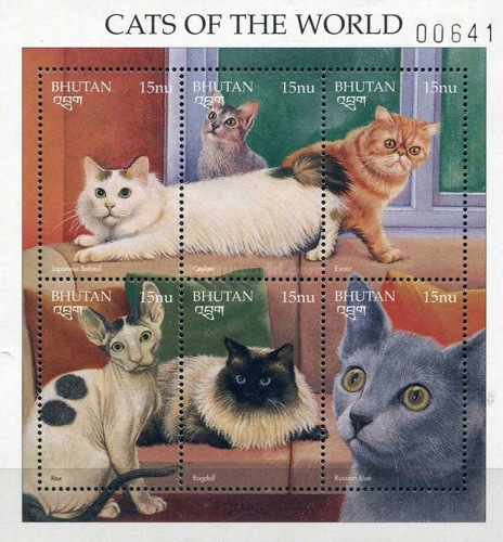 [Cats from Around the World, Typ ]