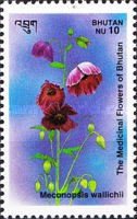 [Medicinal Flowers - Designs showing varieties of the Asiatic Poppy, Typ BDX]