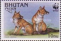 [Endangered Species - Dhole, Typ BLO]