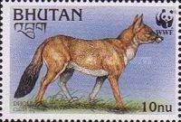 [Endangered Species - Dhole, Typ BLQ]