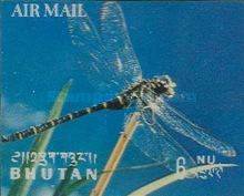 [Airmail - Insects, Typ JH]