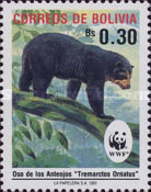 [The Spectacled Bear, type AIK]