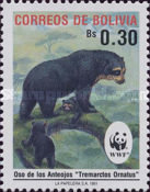 [The Spectacled Bear, Typ AIL]