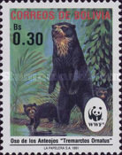 [The Spectacled Bear, type AIM]