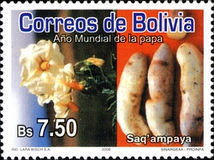 [International Year of the Potato, Typ BLT]