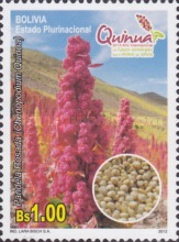 [International Year of Quinoa, Typ BRL]