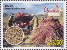 [International Year of Quinoa, Typ BRM]