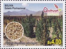 [International Year of Quinoa, Typ BRN]