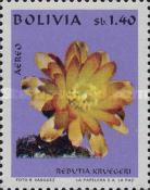 [Airmail - Bolivian Flora, Typ PA]