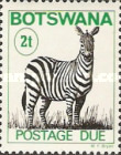 [Plains Zebra - New Perforation and Wide Format, Typ C11]