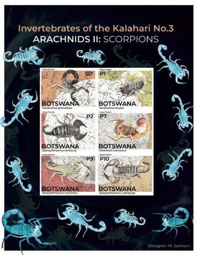 [Fauna - Invertibrates of the Kalahari - Arachnids - Scorpions, type ]