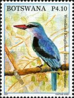 [Birds - Kingfishers of Botswana, Typ AFH]