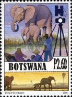 [Elephants in Botswana, Typ AGQ]