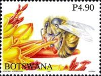 [Honey Bees of Botswana, Typ AHW]