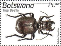[Insects of Botswana, Typ AOV]