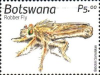 [Insects of Botswana, type AOX]