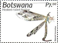 [Insects of Botswana, type AOY]