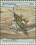 [Insects, Typ JF]