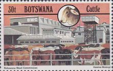 [Cattle Industry, type JY]