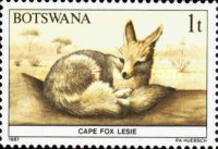 [Animals of Botswana, type OM]