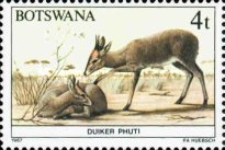 [Animals of Botswana, Typ OP]