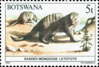 [Animals of Botswana, Typ OQ]